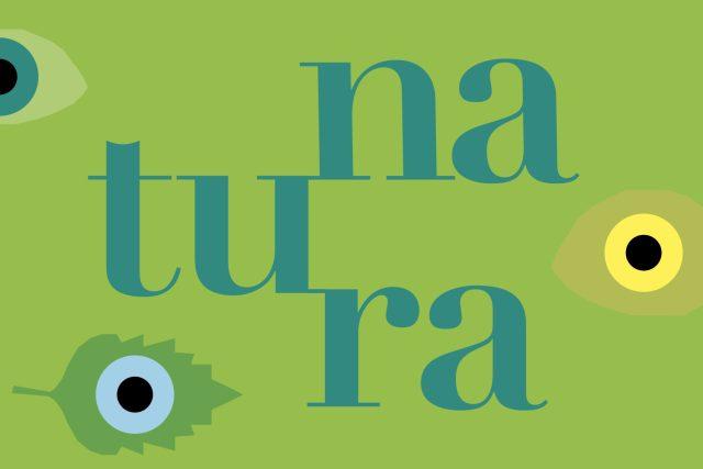 La natura diventa gioco, al MUBA di Milano